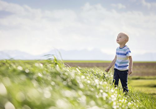 Photo of a child with a bald head standing in a field on a sunny day