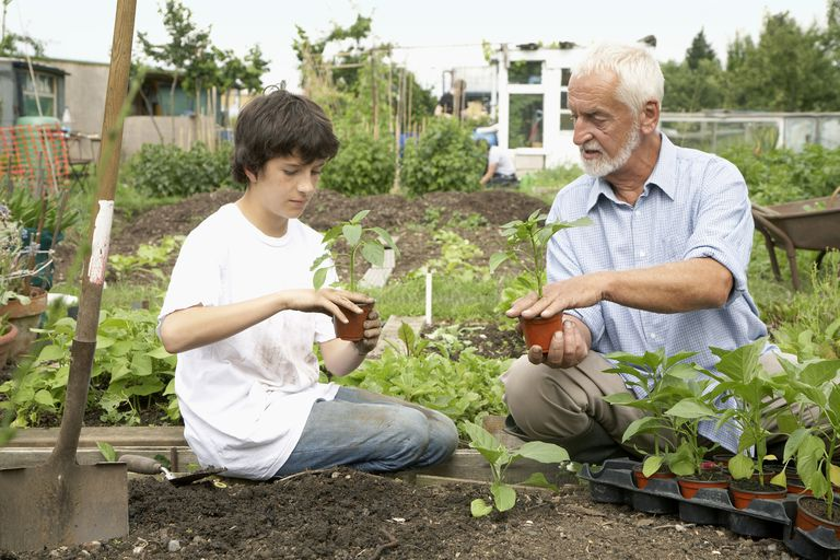 senior man gardening with a teenage boy