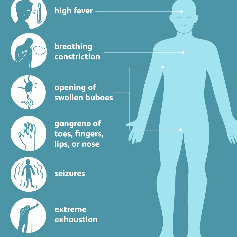 Bubonic Plague: Causes, Symptoms, and Treatment