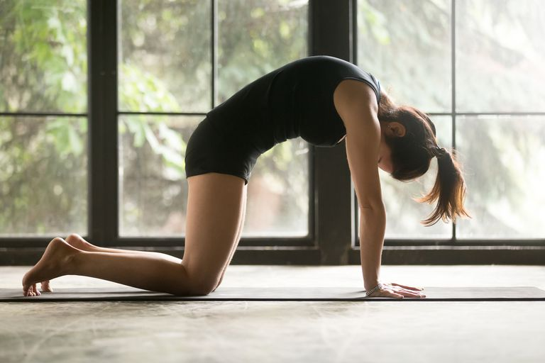 Woman doing yoga in cat pose