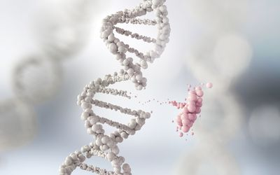 DNA strand with a small part breaking away from the rest.