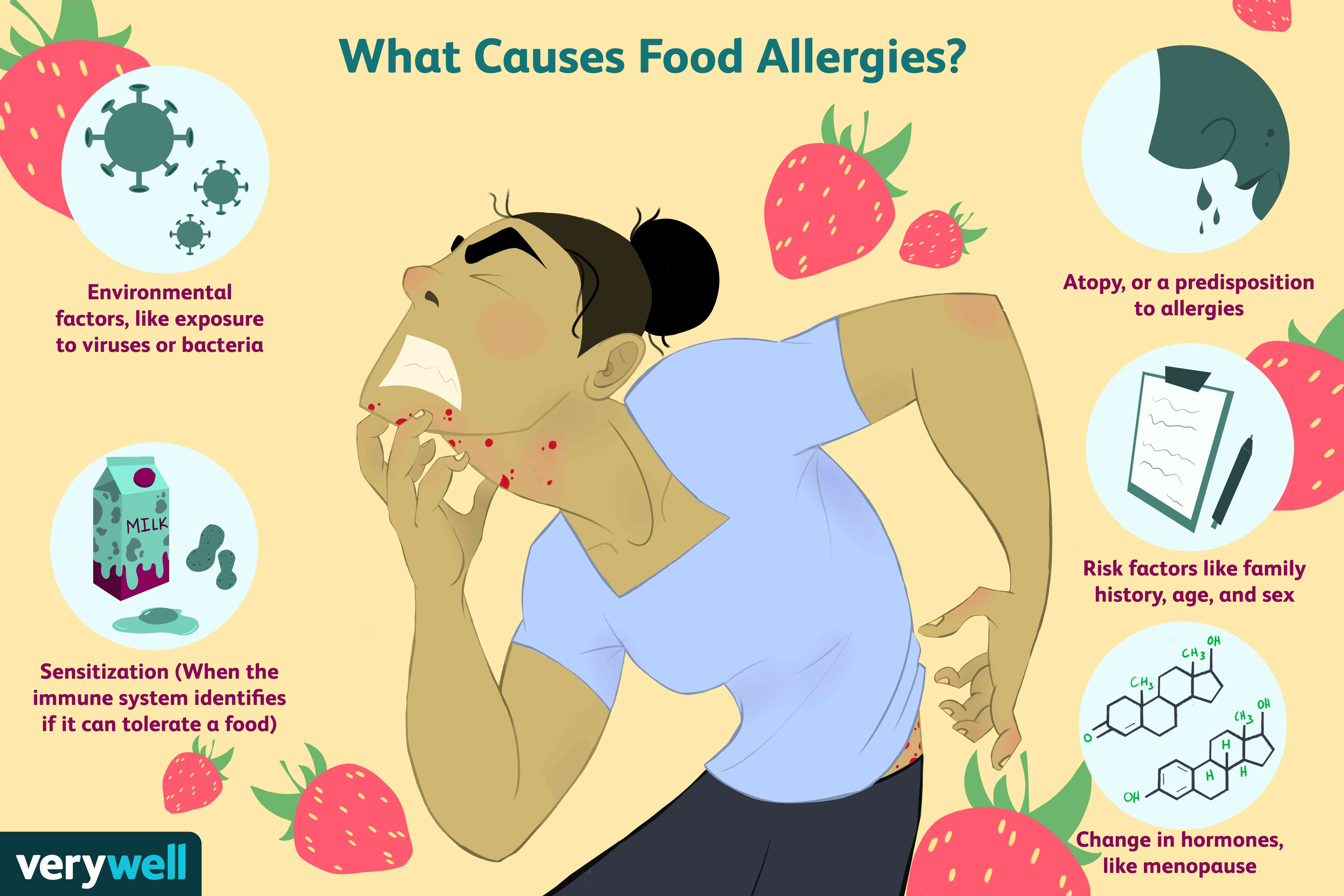 Causes for food allergies.