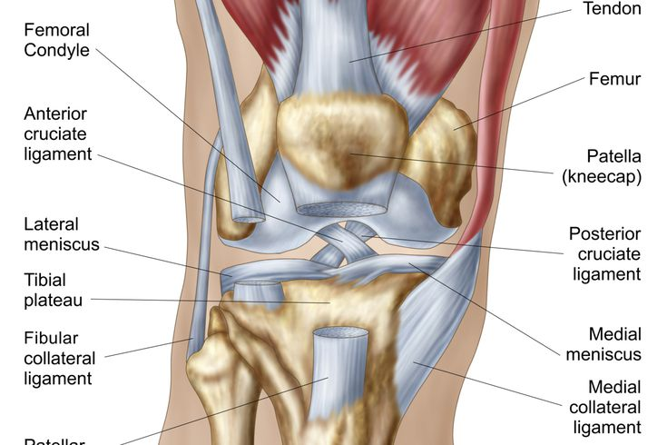 What Is Causing Your Knee Pain
