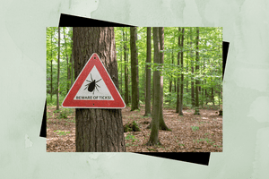 Beware of ticks sign.