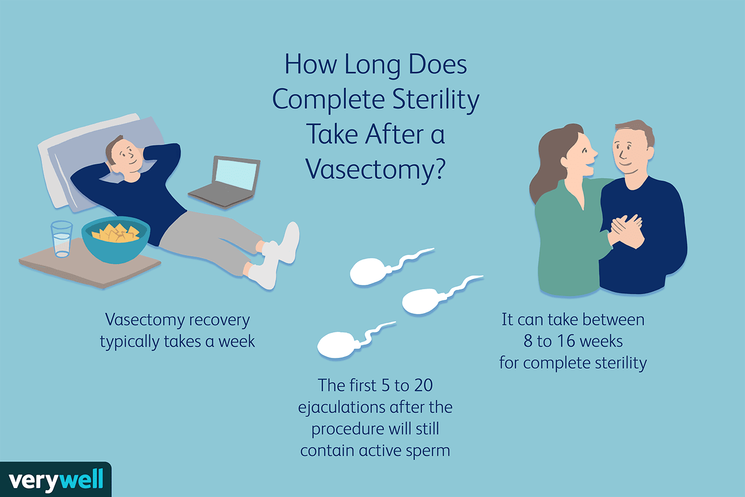 How long does complete sterility take after a vasectomy?