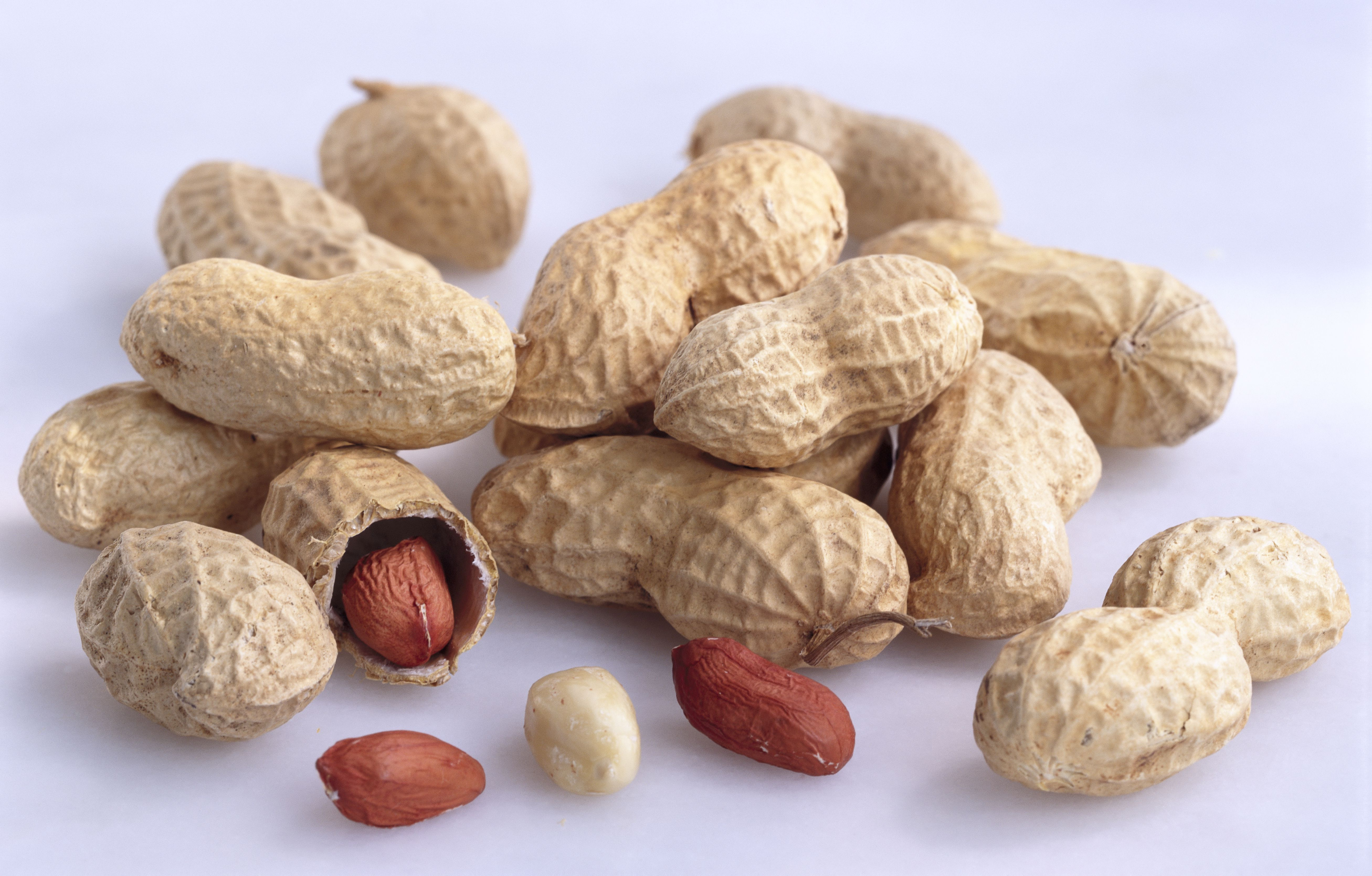 peanuts closeup