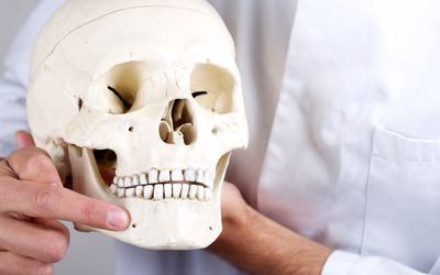 A doctor points to the mental foramen, a small opening in the jaw that the mental nerve passes through.