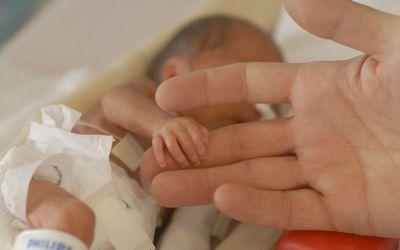 Premature baby holding NICU dad finger
