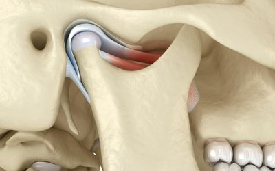 Location of the temporomandibular joint