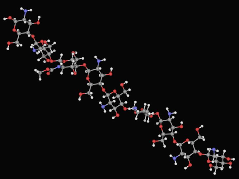 Chitosan molecule