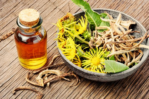 Elecampane flowers, root, and tincture