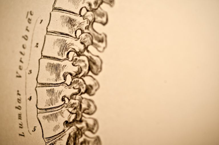 How Your Lumbar Spine Can Cause Back Pain