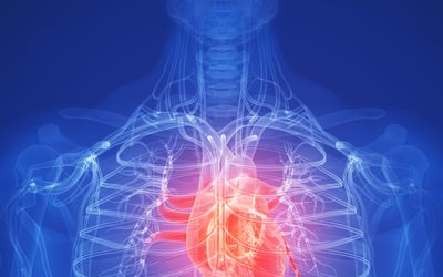 Heart Disease: Signs, Symptoms, and Complications
