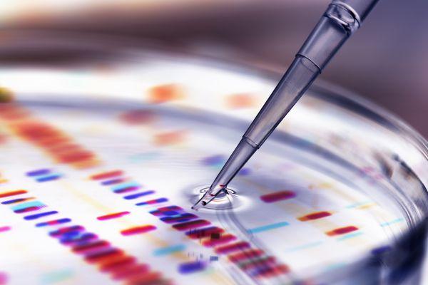 rnai-therapy-genetics-rna