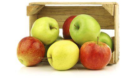 apples-2.jpg