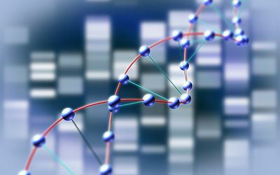 Chromosome, genes, and alleles