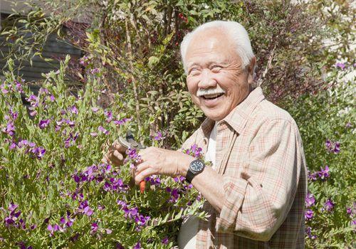 Gardening in Dementia Can Create Joy