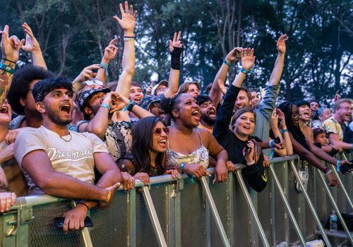 A crowd of festival-goers cheer at Lollapalooza 2021