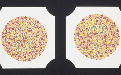 Colour blindness test plates