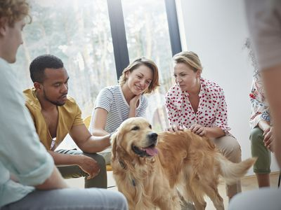 People petting dog in a group therapy session