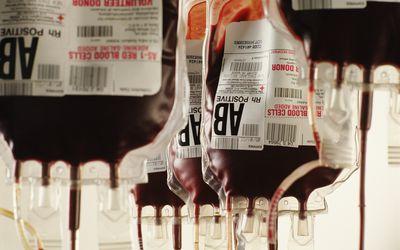 Human Blood Transfusion in Boston