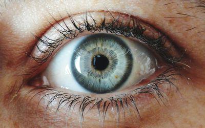 Close-Up Of Human Eye - stock photo