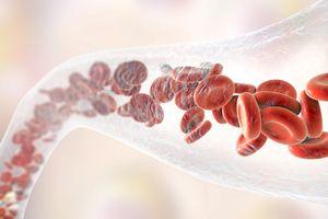 Blood vessel with blood cells, illustration