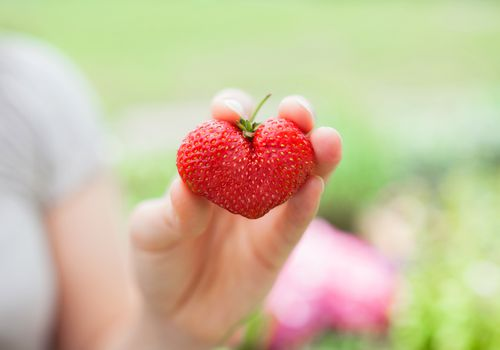 person holding a heart-shaped strawberry