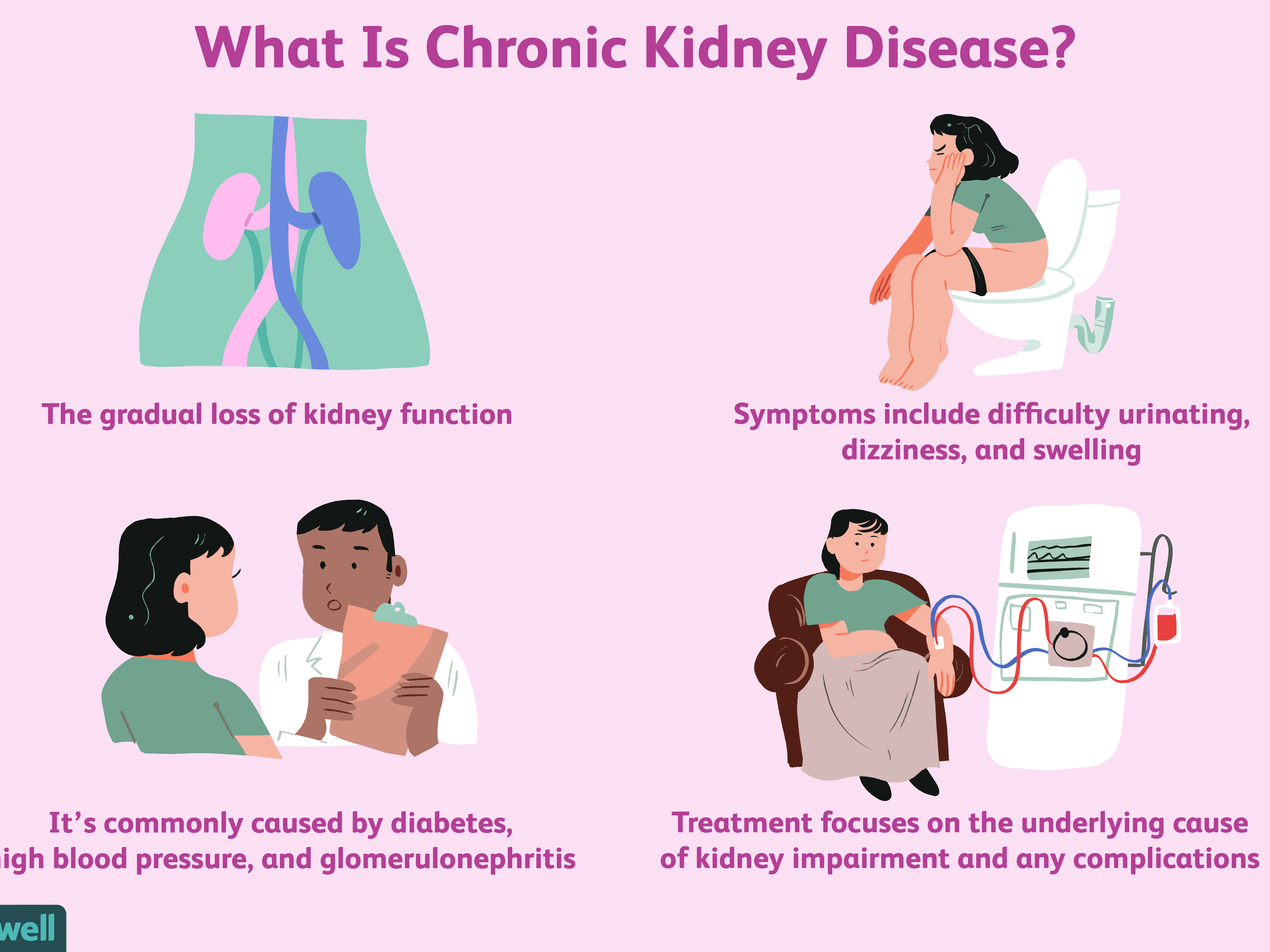 Chronic Kidney Disease Ckd Overview And More