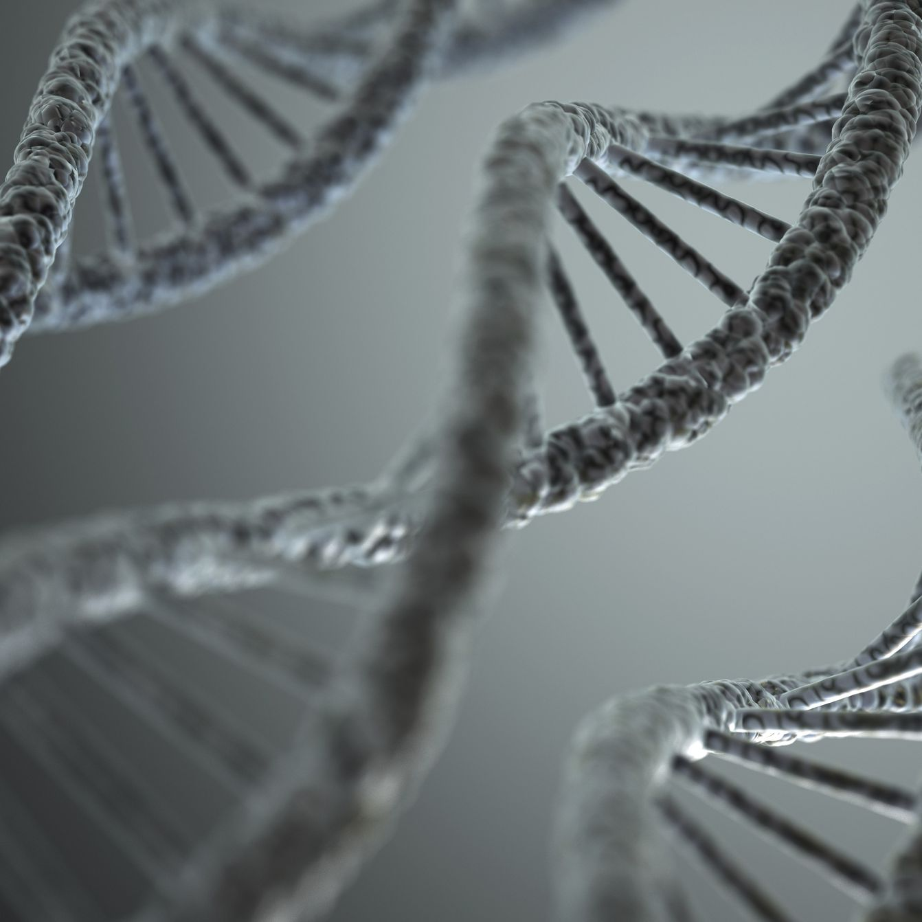 Telomeres, Aging, and Cancer