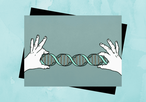Hands holding a double helix.