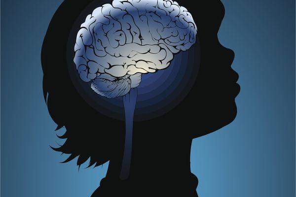 child's brain drawing