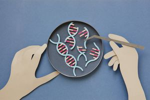 Conceptual paper illustration of human hands and DNA in a lab.