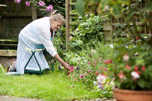 A woman kneeling in her garden