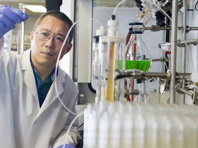 Chinese scientist working in lab