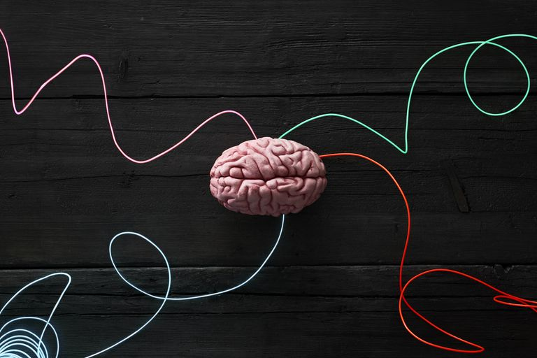 a brain with colored strings attached representing brain function