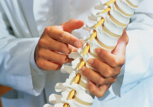 A doctor holds a model of the spine and points to a structure.