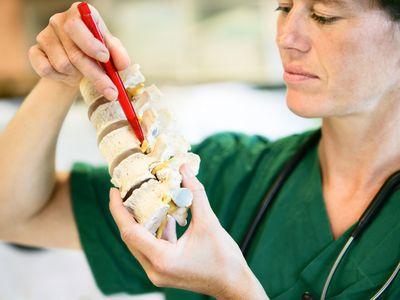 Lumbal spine - stock photo