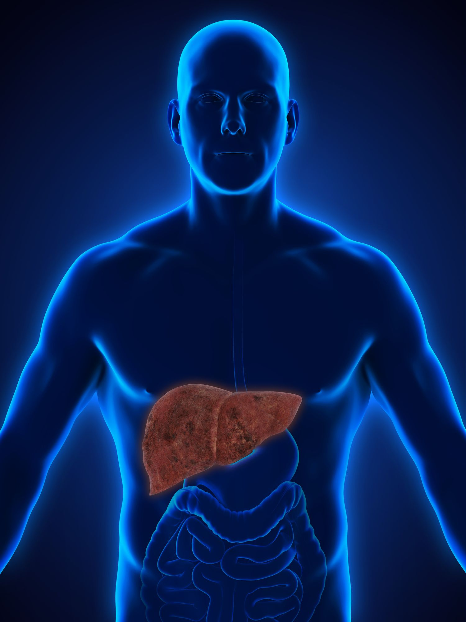 An Overview of Fatty Liver Disease