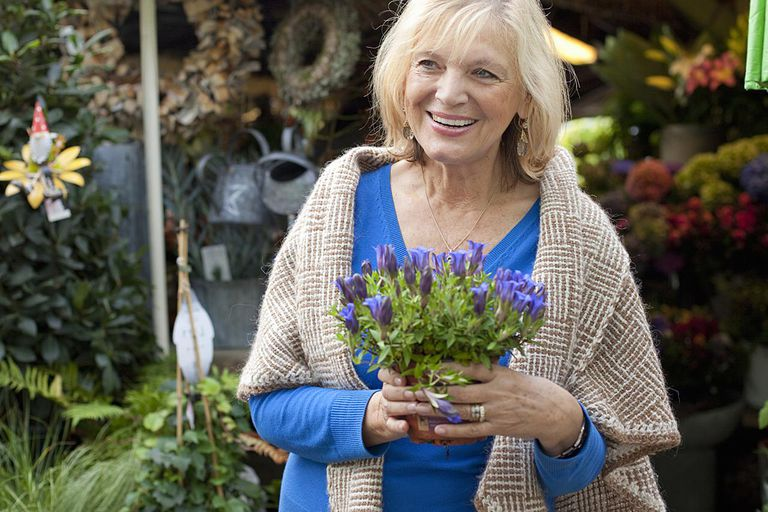 senior woman at garden shop, holding flower pot with gentian, Bavaria, Germany