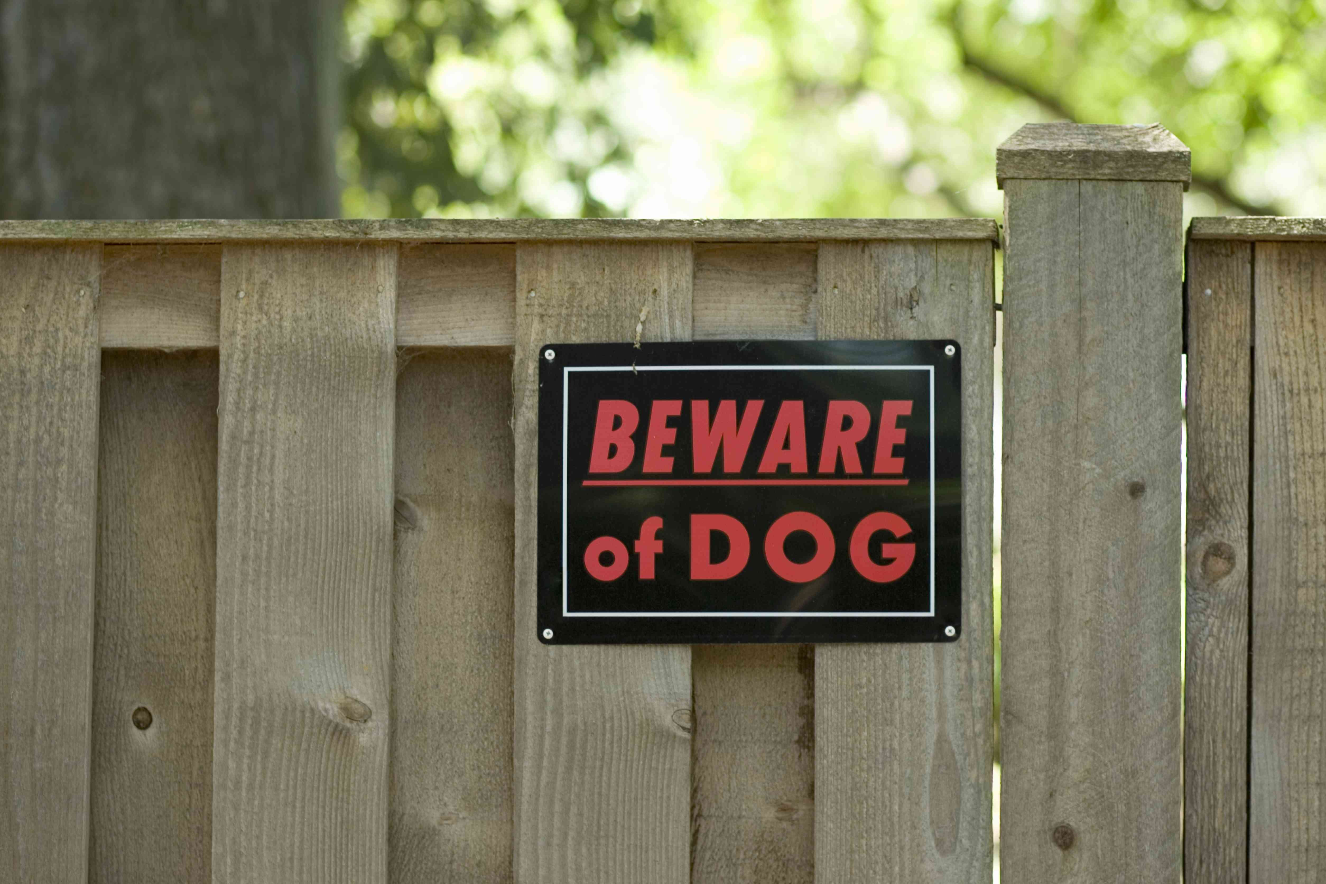 Beware of dog sign on wooden fence