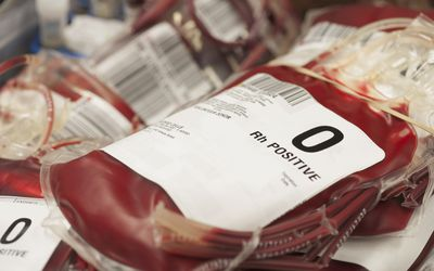 Pouches of donated blood in hospital