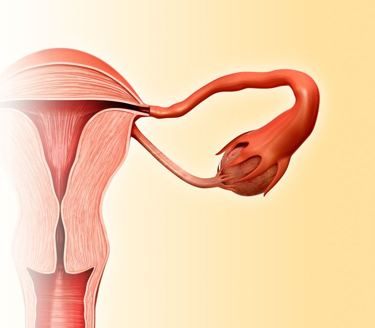 Side Effects and Risks of Oophorectomy