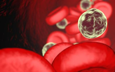 Neutrophils Function and Abnormal Results