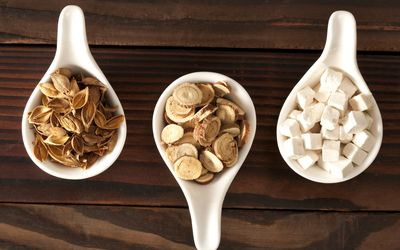 Lumbrokinase: Benefits, Side Effects, Dosage, and Interactions