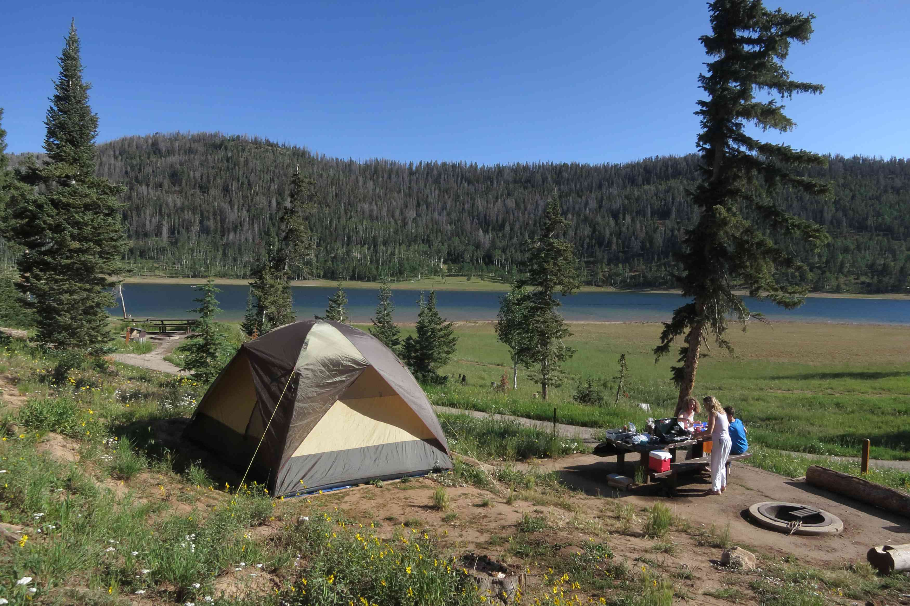 Family with a tent camping near a lake