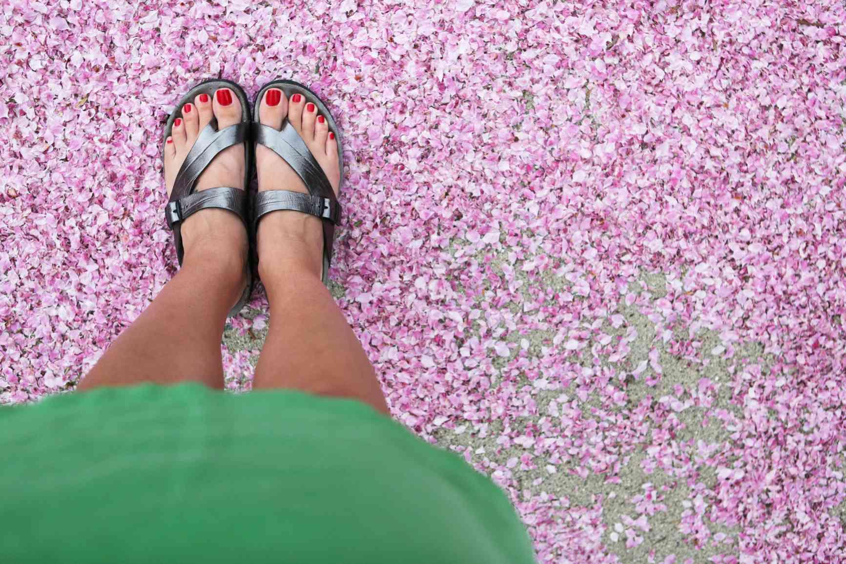 Woman's feet wearing sandals on light purple flower petals