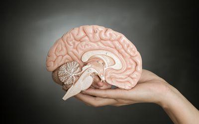 Low Dopamine in Fibromyalgia and CFS