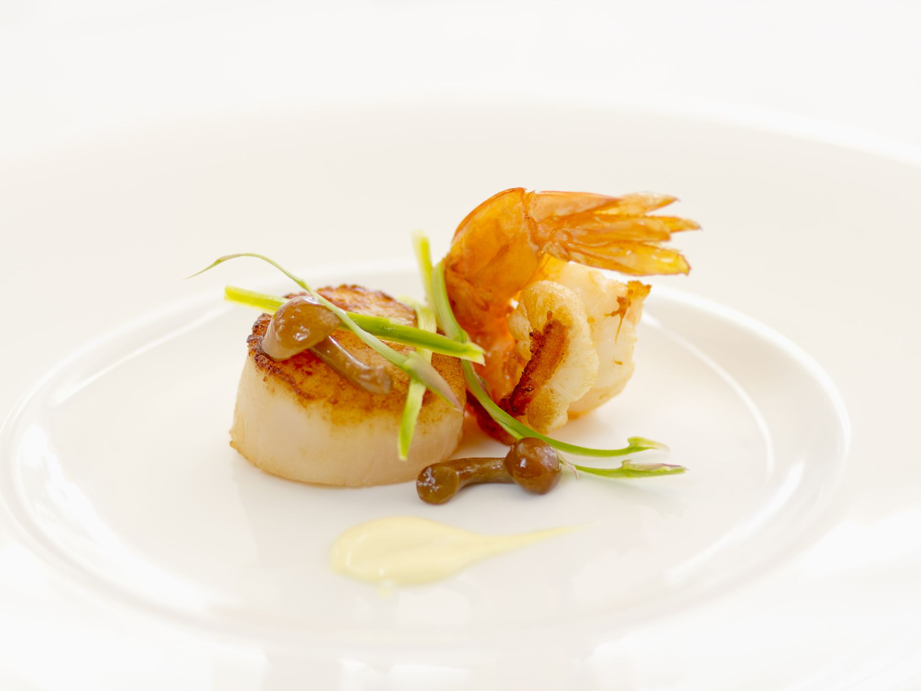 Scallops as Part of a Low-Cholesterol Diet