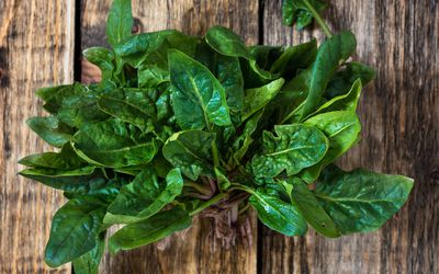 Fresh organic spinach on wooden background